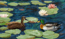 lilies-and-ducks
