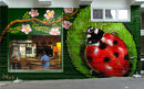a-giant--ladybug-visit